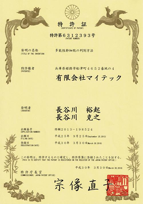 多能性幹細胞の判別方法_日本